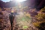 Tupiza w siodle - Boliwia